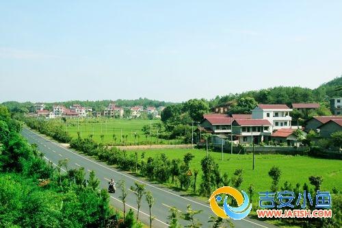 苏溪镇荣获省级生态旅游示范乡镇