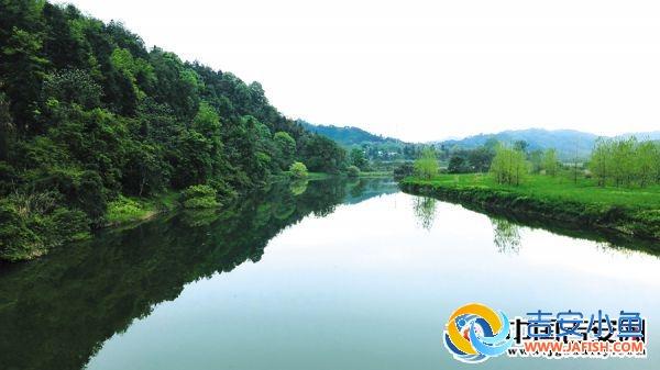 万安县高陂镇680乡道沿路风景美